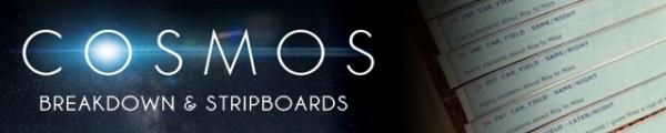 COSMOS Banner Stripboards