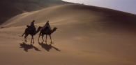 LAWRENCE OF ARABIA 6