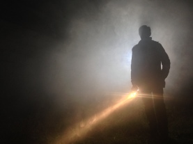 Arjun in the mist - Cosmos Night Exterior Field